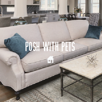 posh-with-pets-by-chapel-hill-nc-interior-designer-julie-wagner.jpg