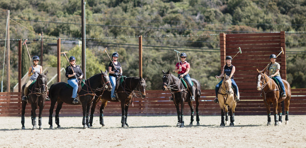 POLO AND RIDING SCHOOL -