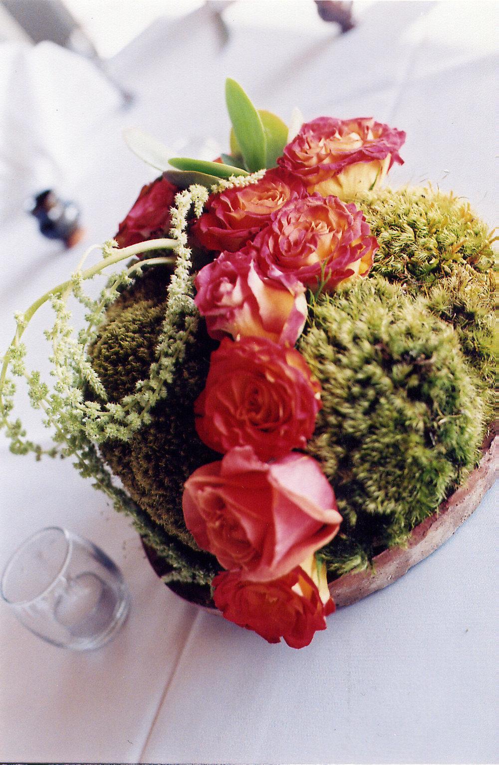 celeste_wedding8.jpg