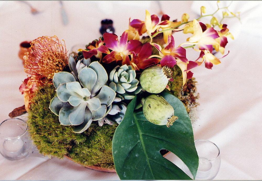 celeste_wedding13.jpg