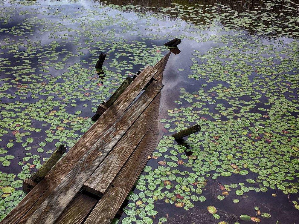 dock_IMG_6820.jpg