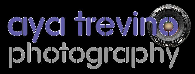 aya logo 1.jpg