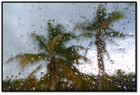 monsoon car insurance