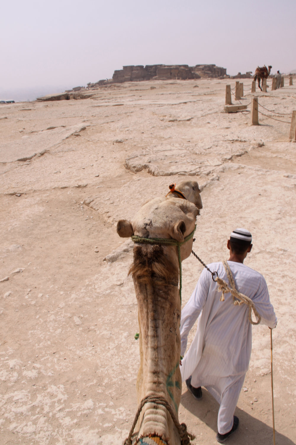 """""""Travel by Camel""""All images © Stephanie Elaine Cavanaugh. All rights reserved."""