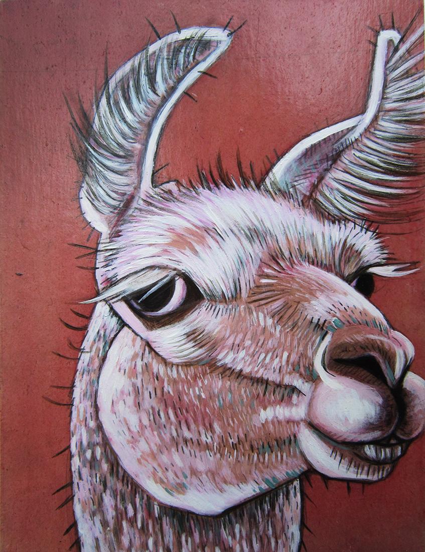 pink llama 2_web.jpg