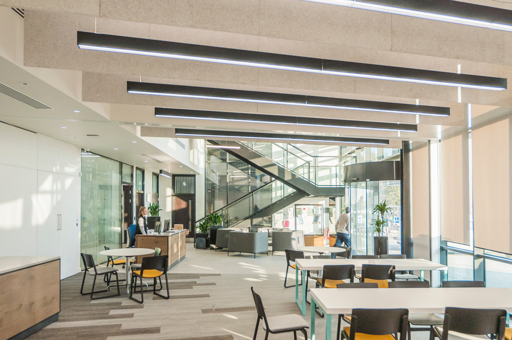 A light, flexible interior space focuses on team wellbeing and allows for business expansion.