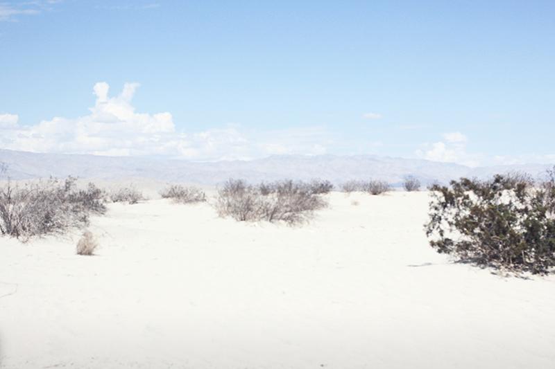 TessMilani_DesertSeries06.jpg