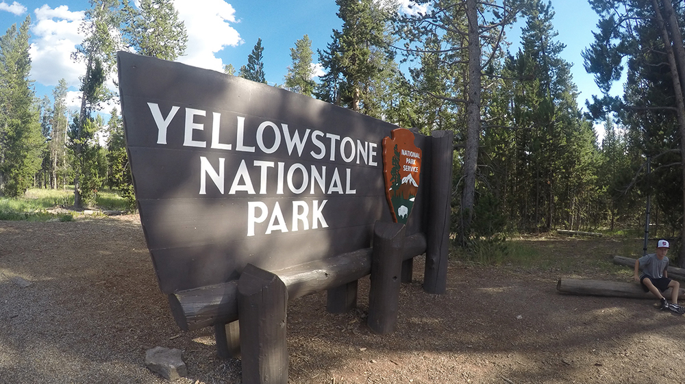 Yellow Stone National Park: Saw tons of Bison and Moose, and Old Faithful.