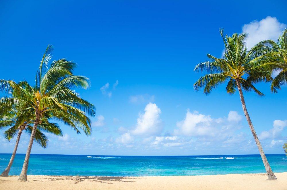 サンライズ英会話ハワイの夏