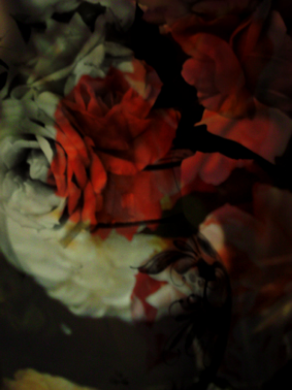 Seduction © Sonya Pletes 2015