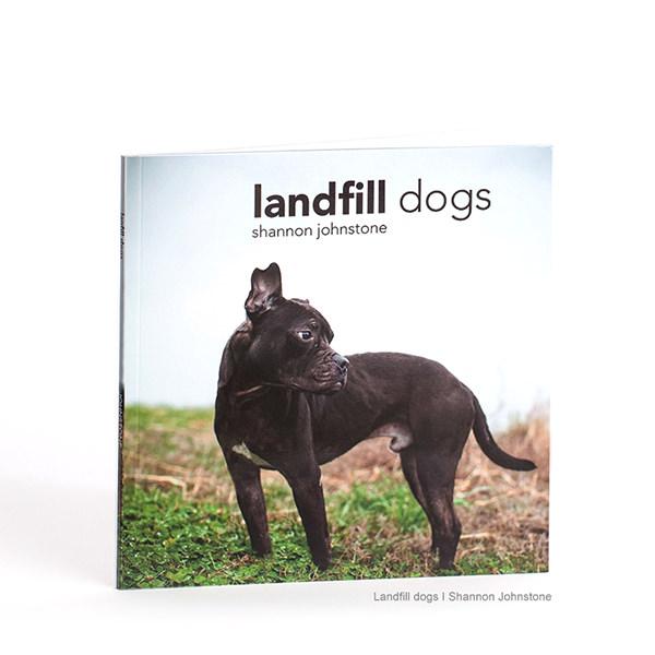 landfill-dog.jpg