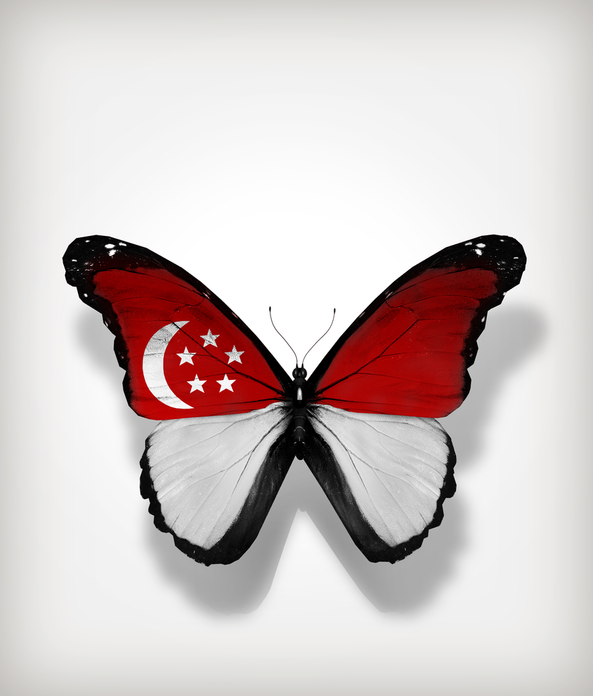 A society that goes beyond CMIO – the next stage in Singapore's metamorphosis?