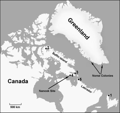 canada-vikings.png