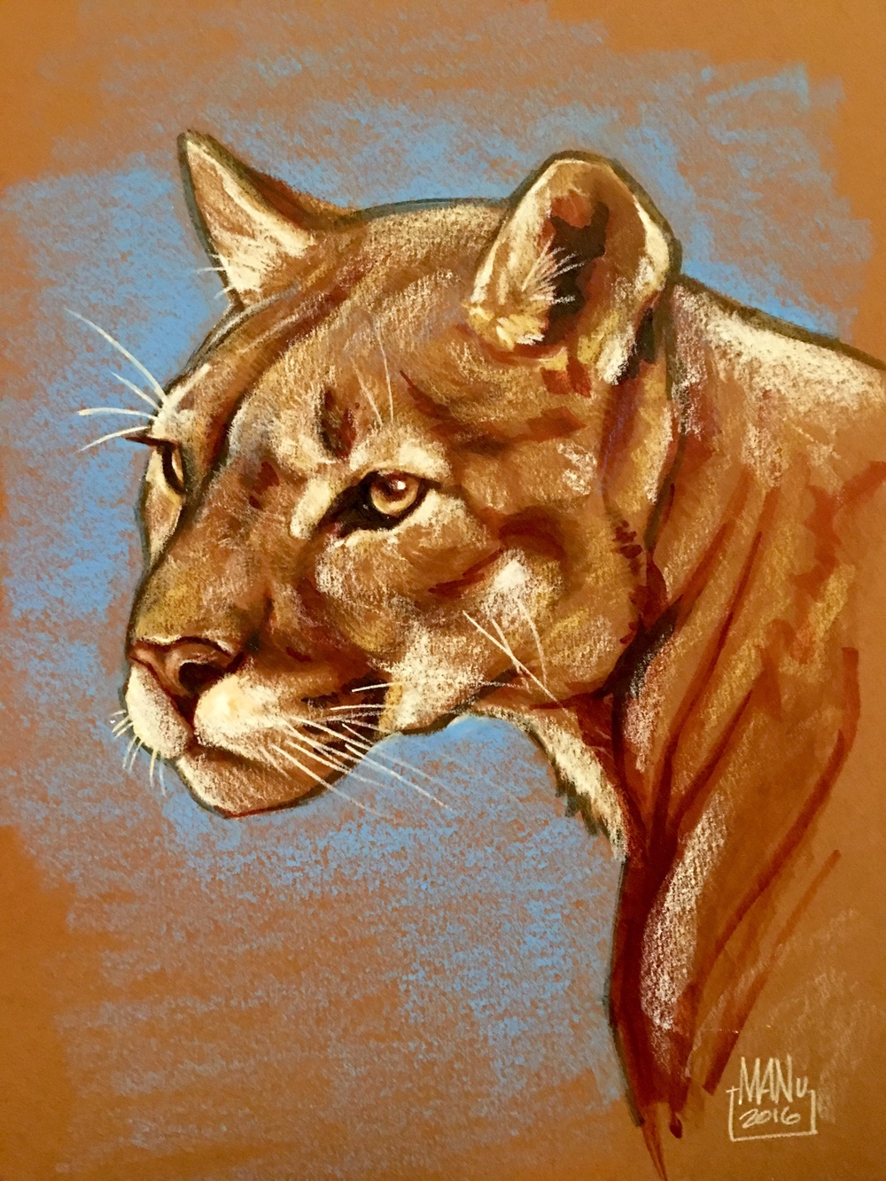 Cougar art with Copic Markers, colored pencils and Neo colors.