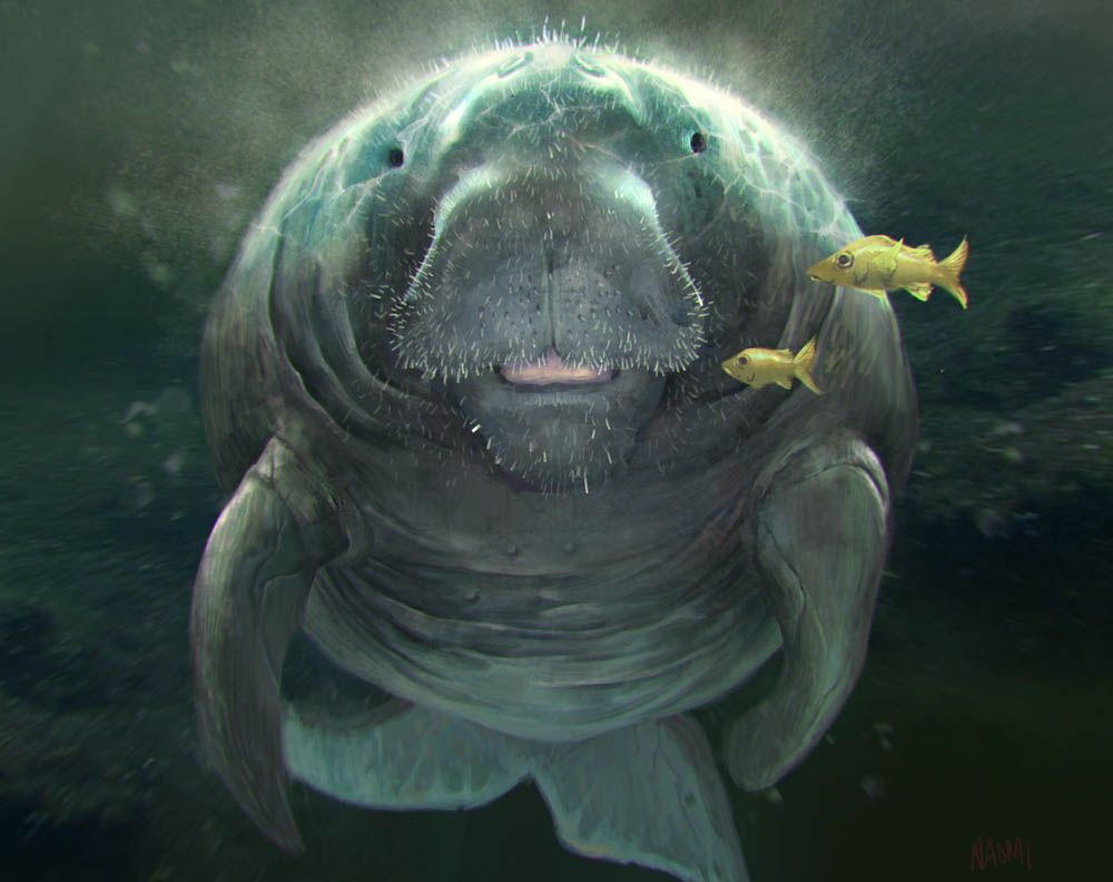 """Dugong"" by  Naomi Baker  (digital)"