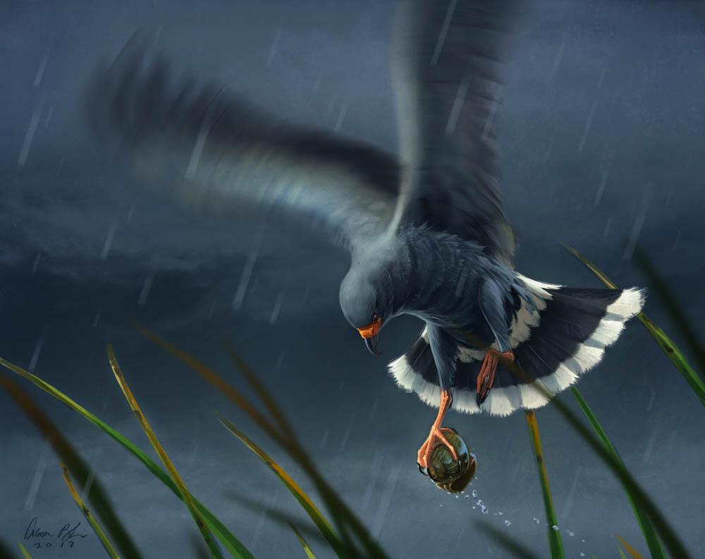 """""""Escargot"""" by  Aaron Blaise  (digital)"""