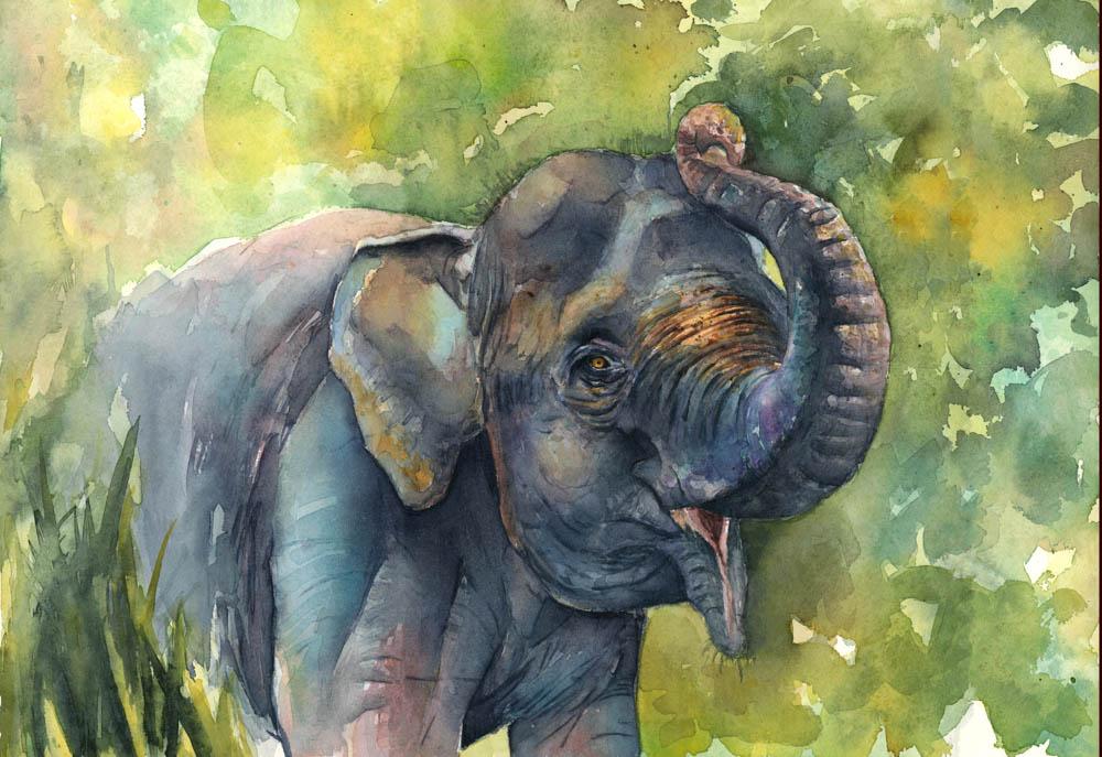 """Sumatran Elephant"" by  Charity Oetgen  (Watercolor)"