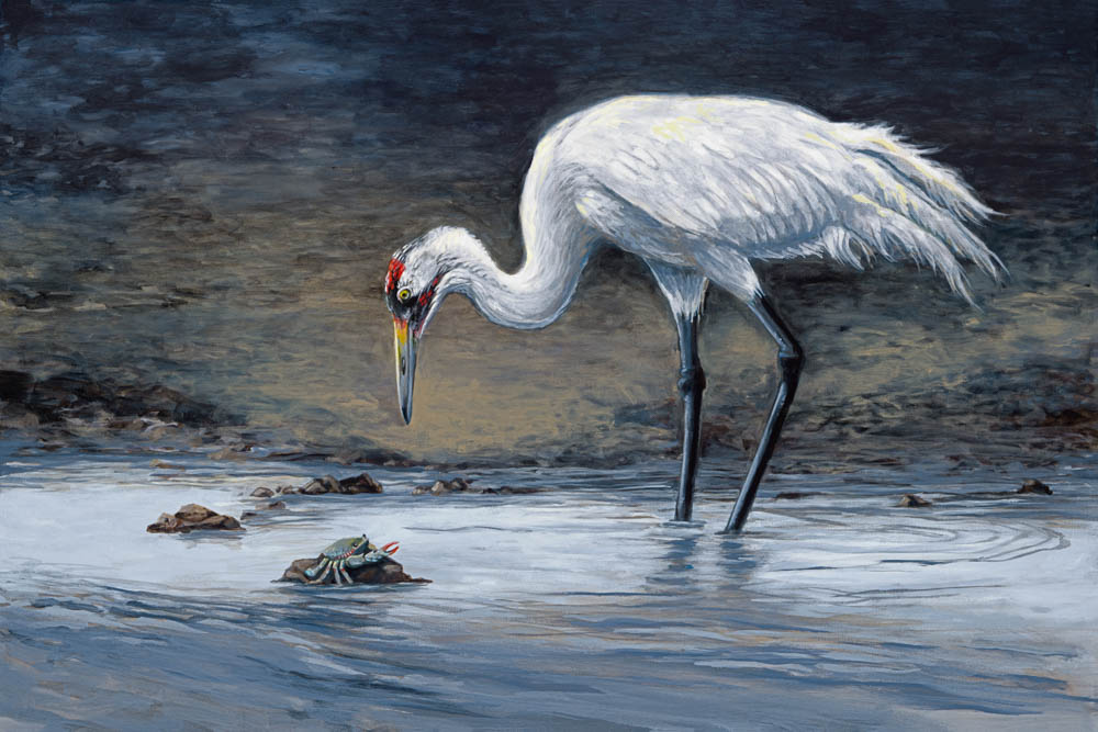 """""""Early Morning Hunt"""" by  Kristy Tipton  (acrylic)"""