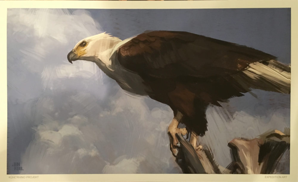 """Eagle"" by Jonathan Kuo"