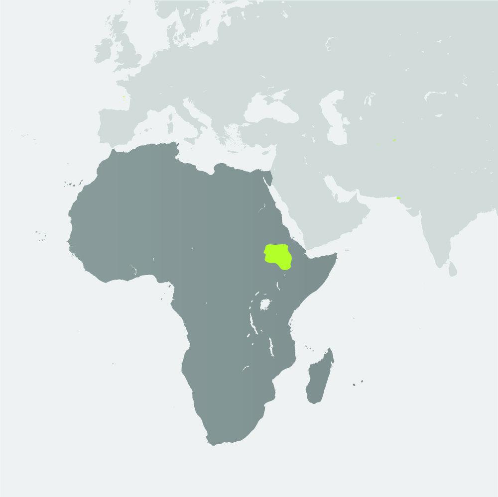 Map__Bonobo.jpg
