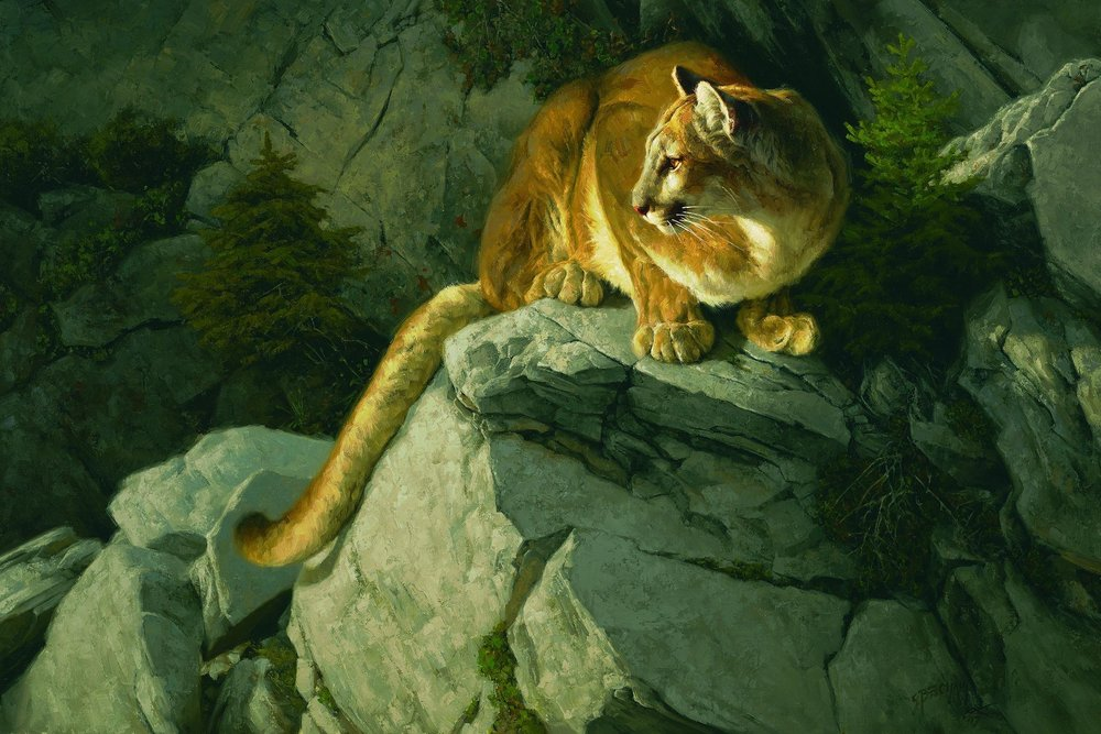 """Vantage Point"" by  Greg Beecham  (Oil on linen)"