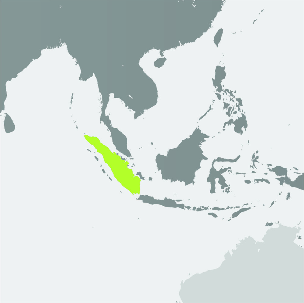 Map__Sumatran Elephant.jpg
