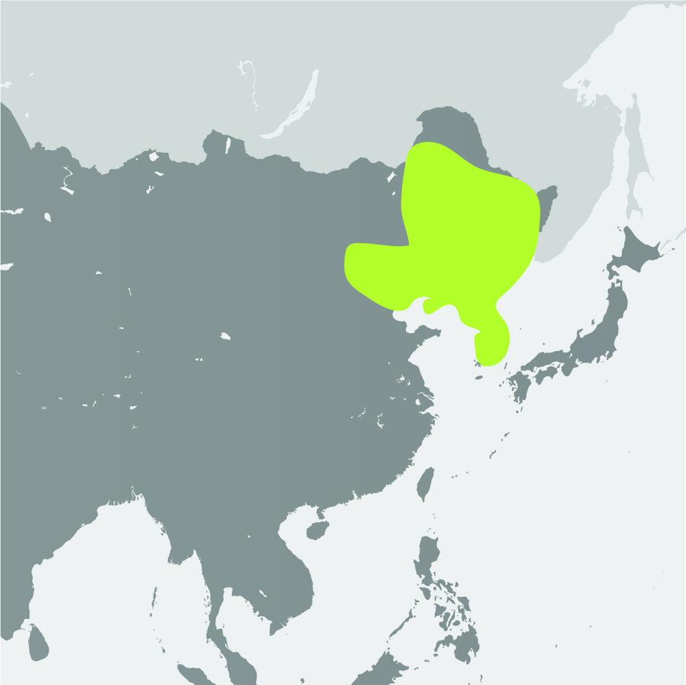 Map__Siberian Tiger.jpg