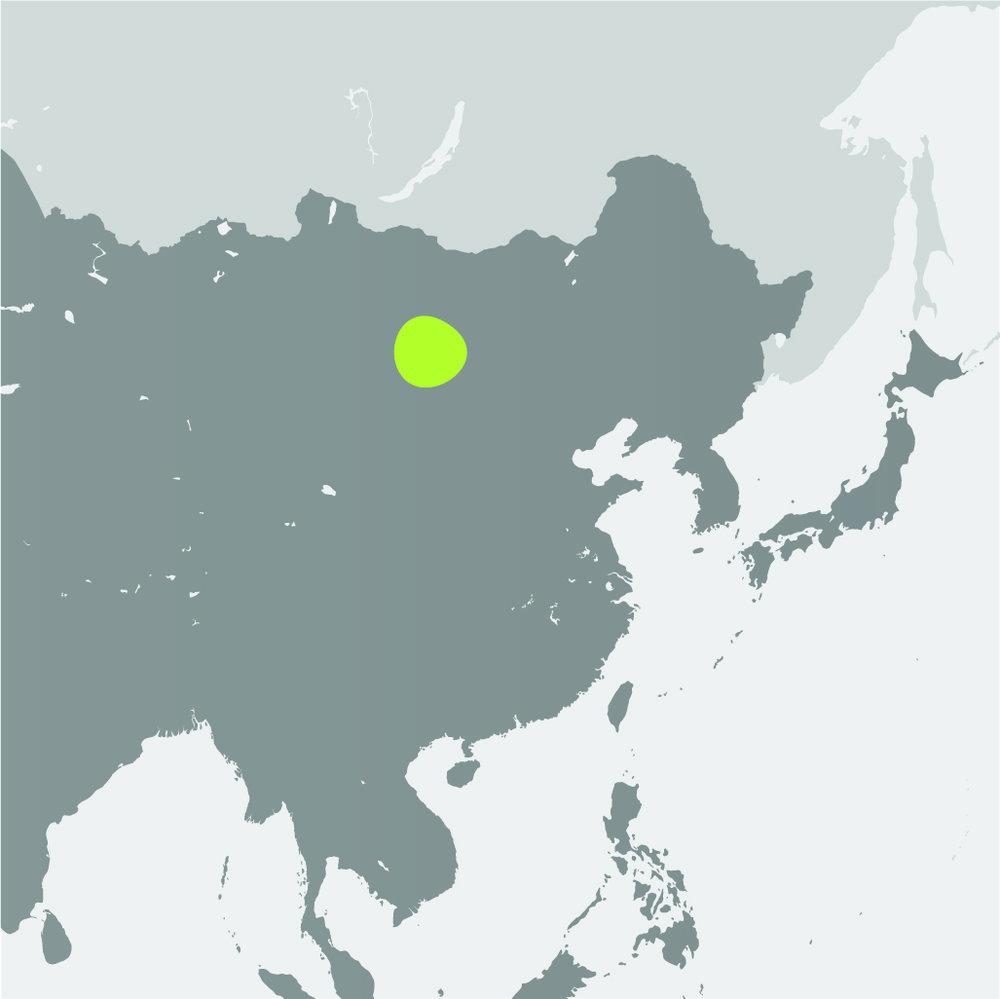 Map__Przewalskis Wild Horse.jpg