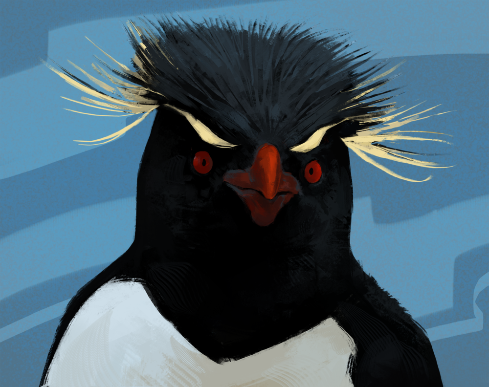 """Nice hairstyle, Mr. Pingu!"""