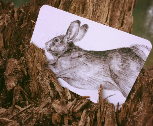 """Rabbit card"""
