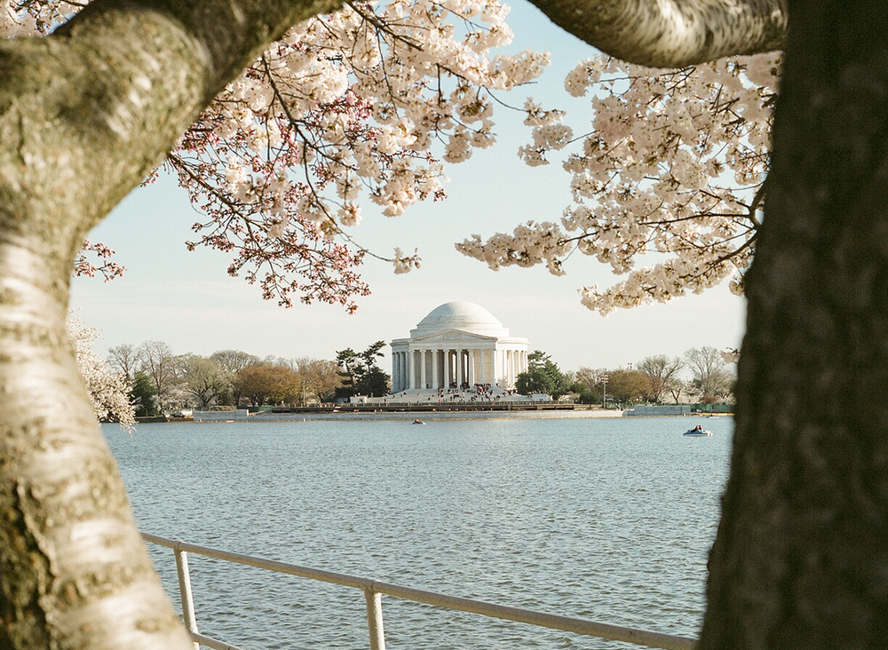 Thomas Jefferson Memorial, 2011
