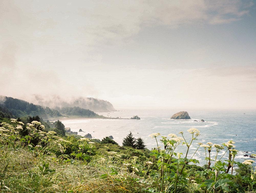 Northern California Coast, 2013