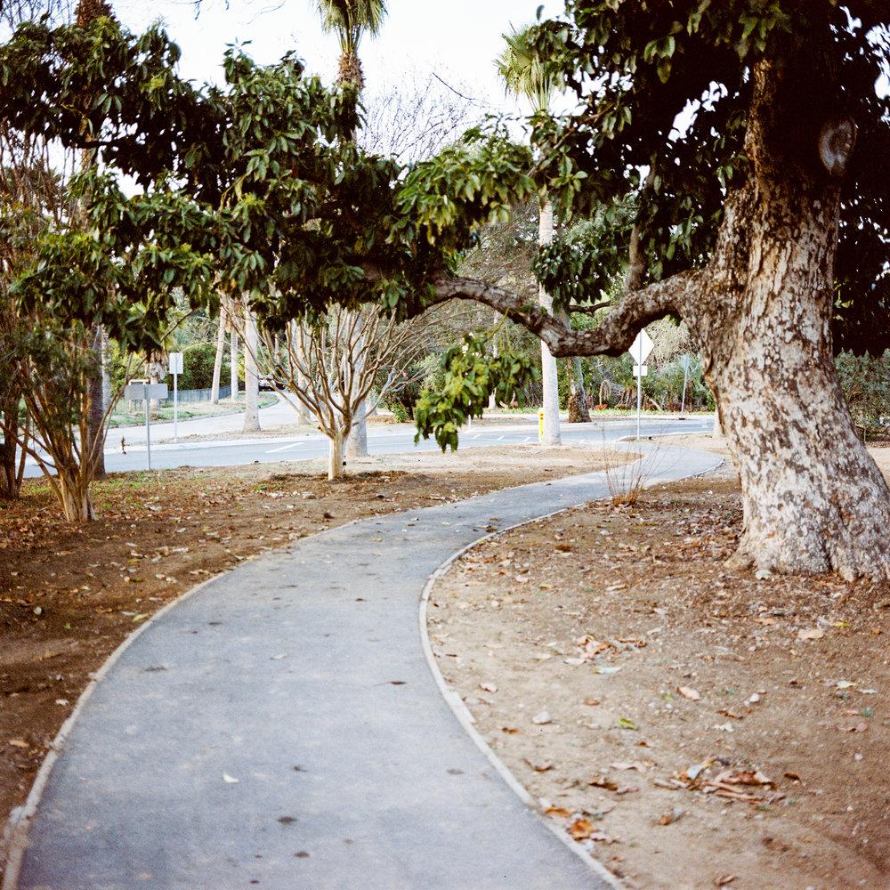 Pathway, Pasadena, CA, 2014