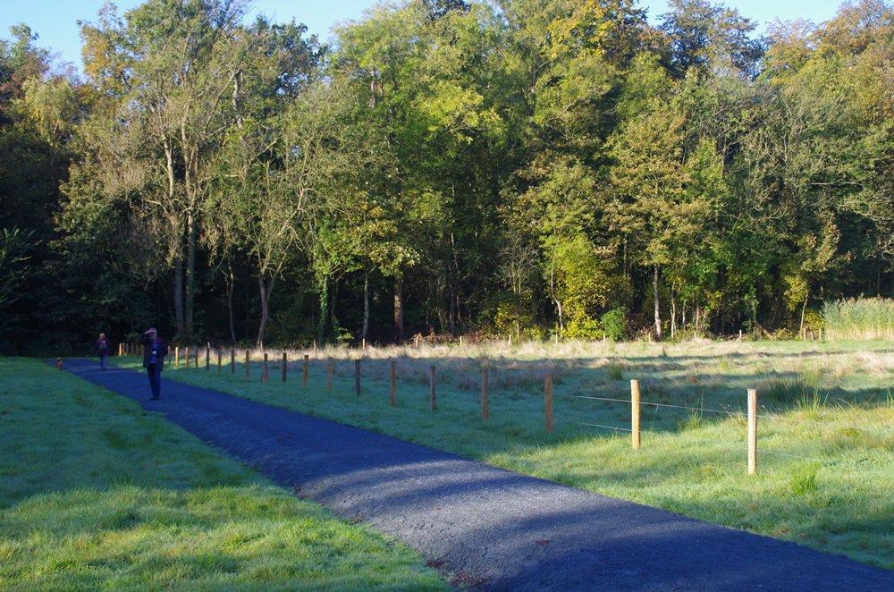 Wandelpad tussen Hof ter Linden en Fort 5.