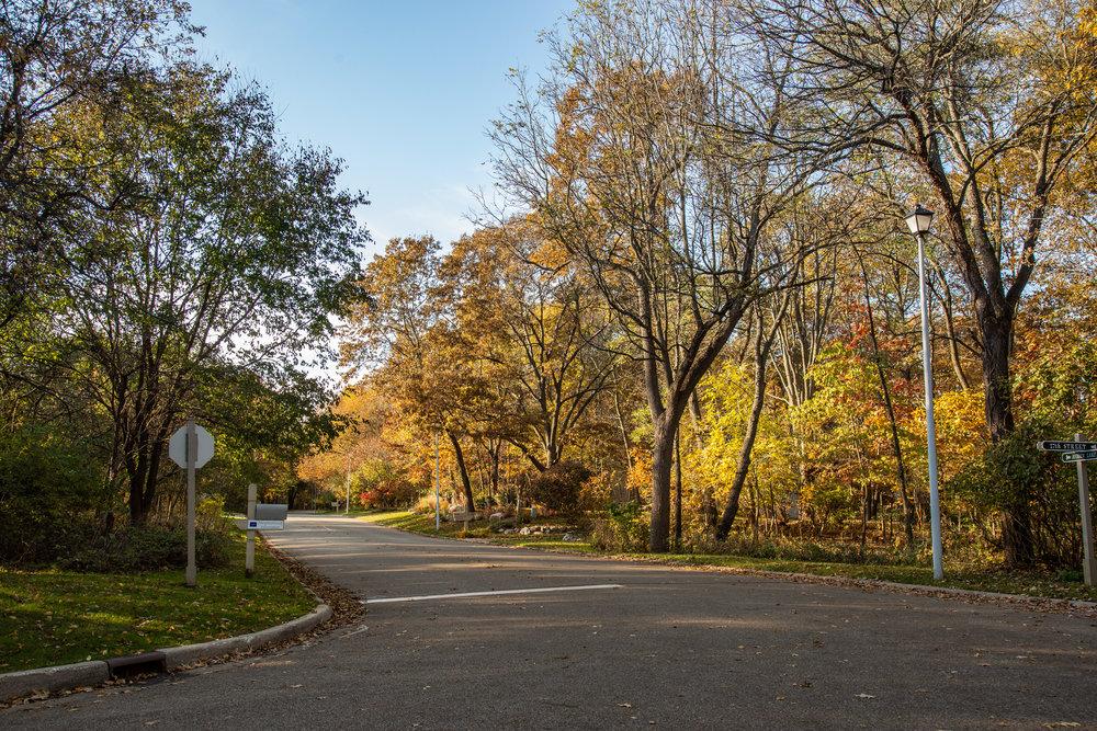 11.16.18-Hidden Lake Info. Mailbox_Street View.JPG