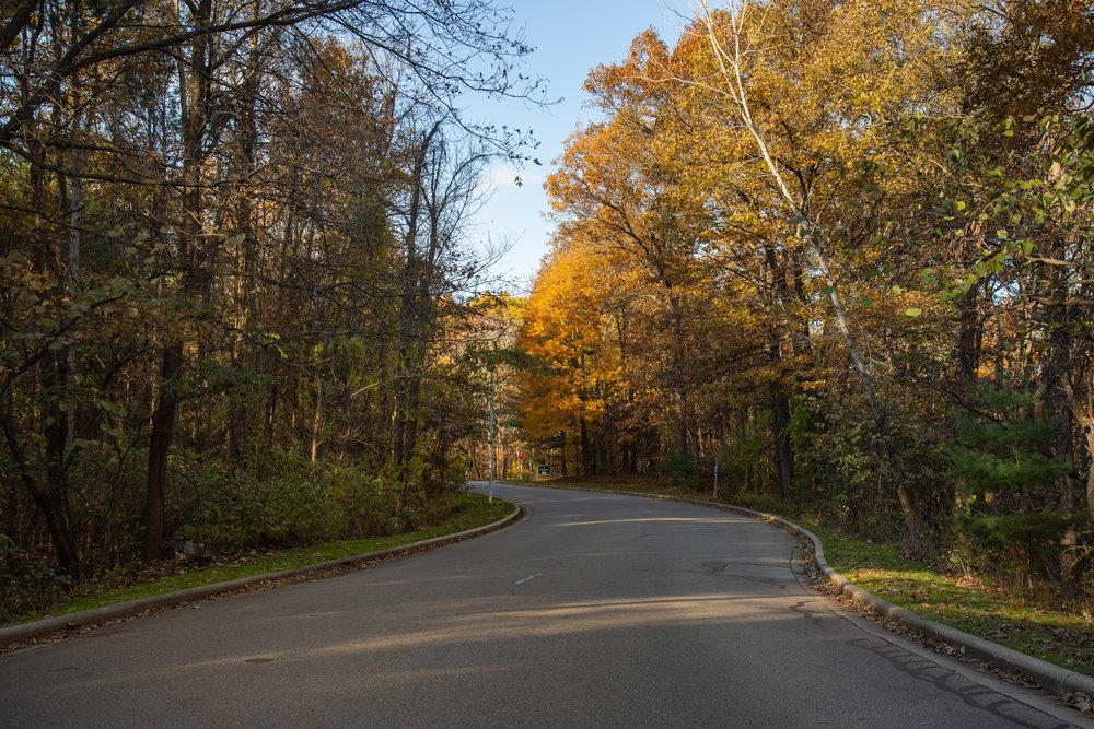 11.16.18-Hidden Lake_Driveway Entry.JPG