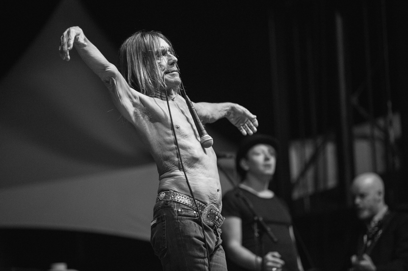 Iggy Pop, Riot Fest Chicago 2015