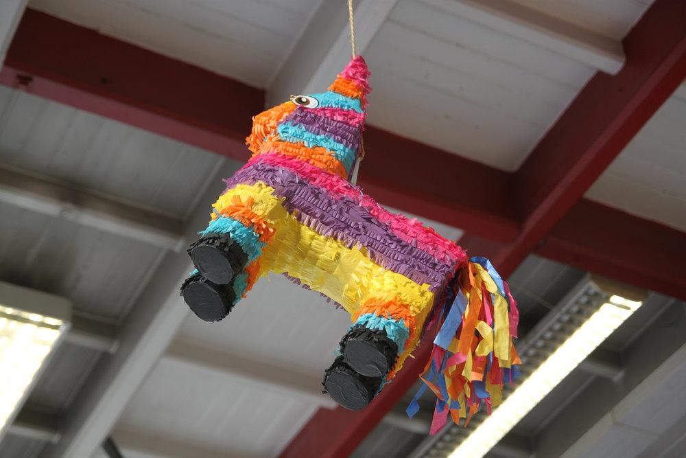 Alfredo – the Piñata