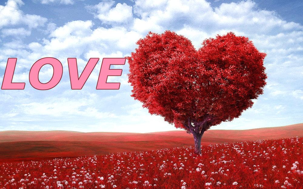 love.jpeg