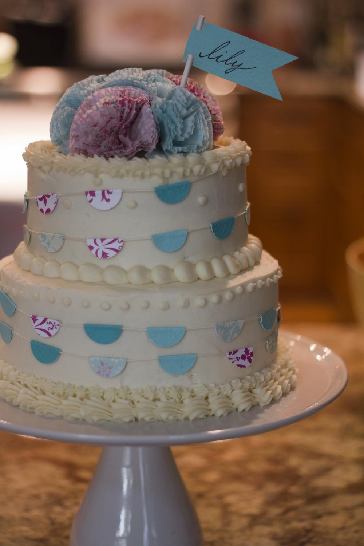 Birthday Cake14 - Banner Cake.jpg