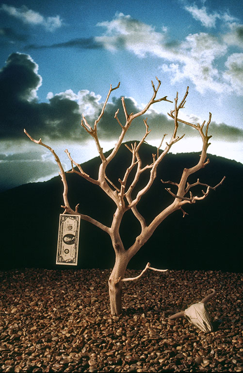 moneyTree.jpg