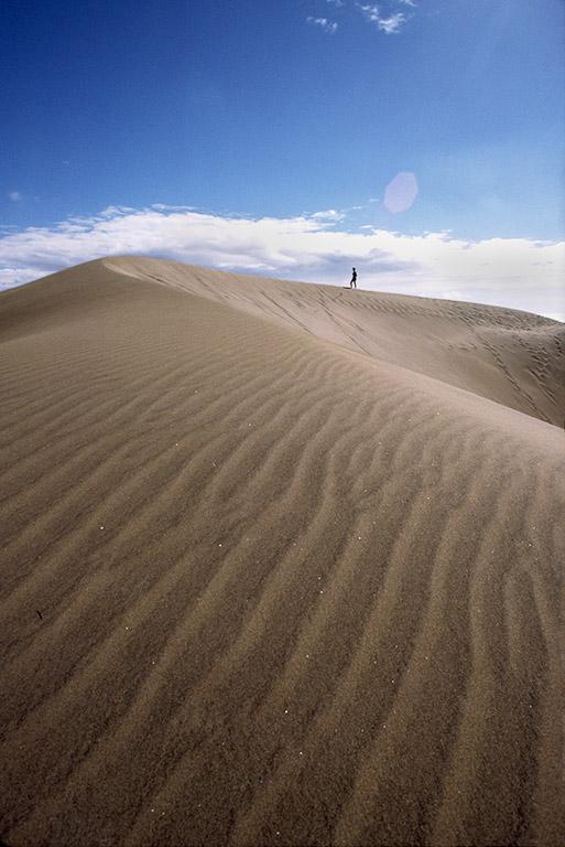 sand dune figurell.jpg