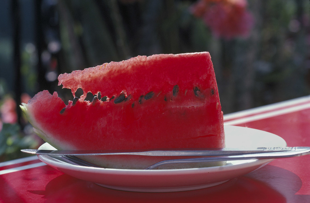 melon slice.jpg