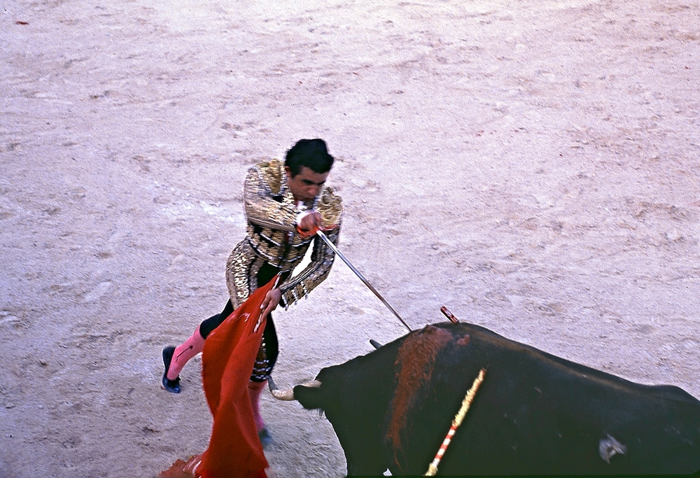 MATADOR STICKING BULL copy.jpg