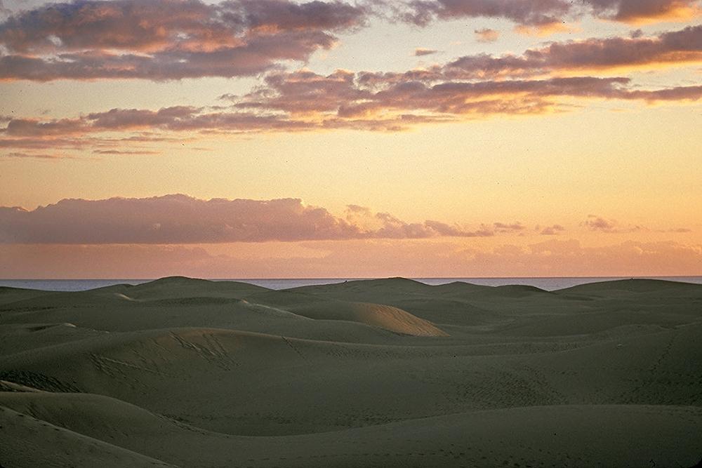 dunes in sunset***.jpg