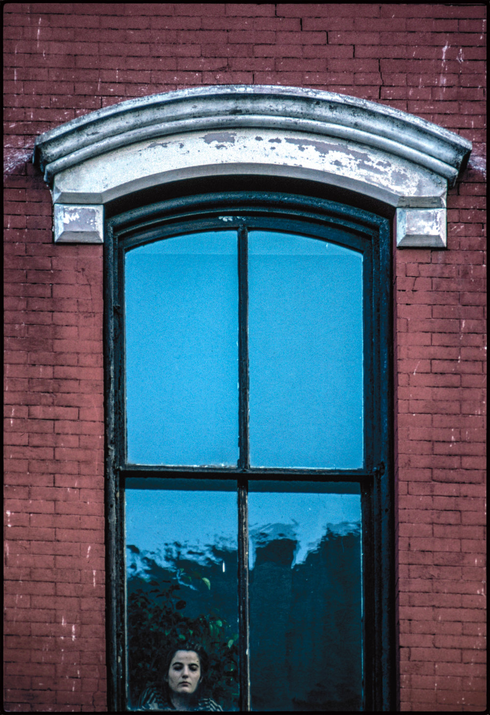 face-in-window-copy-2.jpg