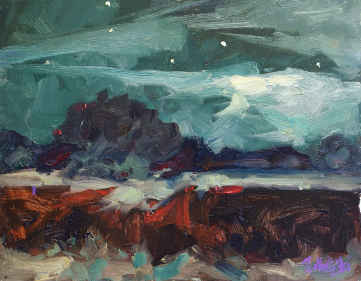 "Kalahari Night 11"" x 14"" oil on board"