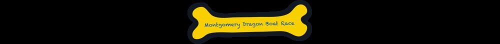 Press_DragonBoatRace.png
