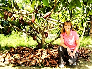 kim-wilson-cofounder-good-king-snacking-cacao-cocoa-farm-sulawesi-indonesia-tree-pods-demonstration-plot