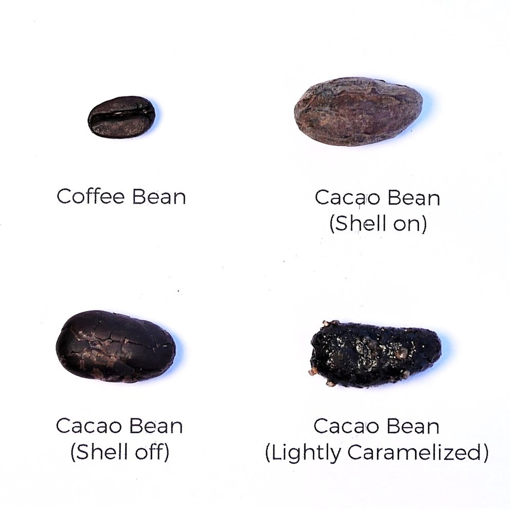 Coffee vs. cacao beans
